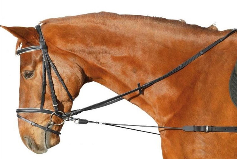 амуниция для лошади название с картинками снимке четко
