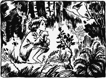 Гуси-лебеди детские рассказы.